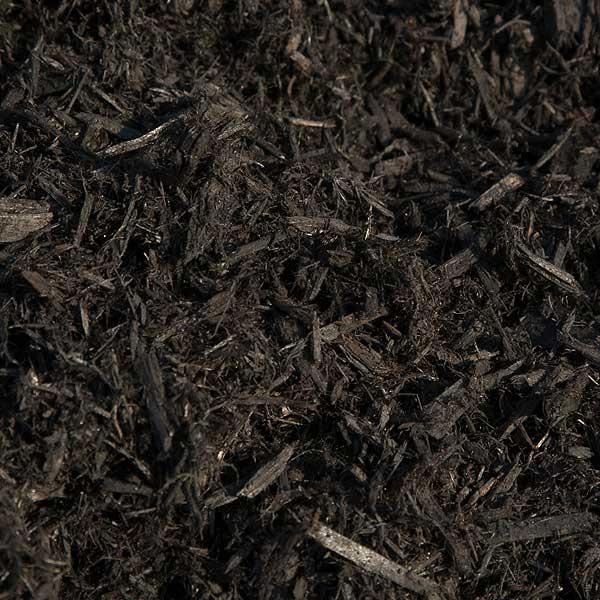 Terra Vista Landscape - Enhanced Black Cedar